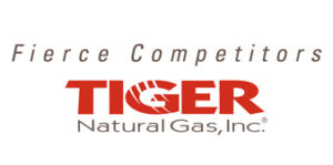 Picture 23 Tiger logo